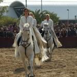 TARANTOS--FOTOS--(2)