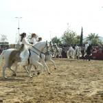 TARANTOS--FOTOS--(9)