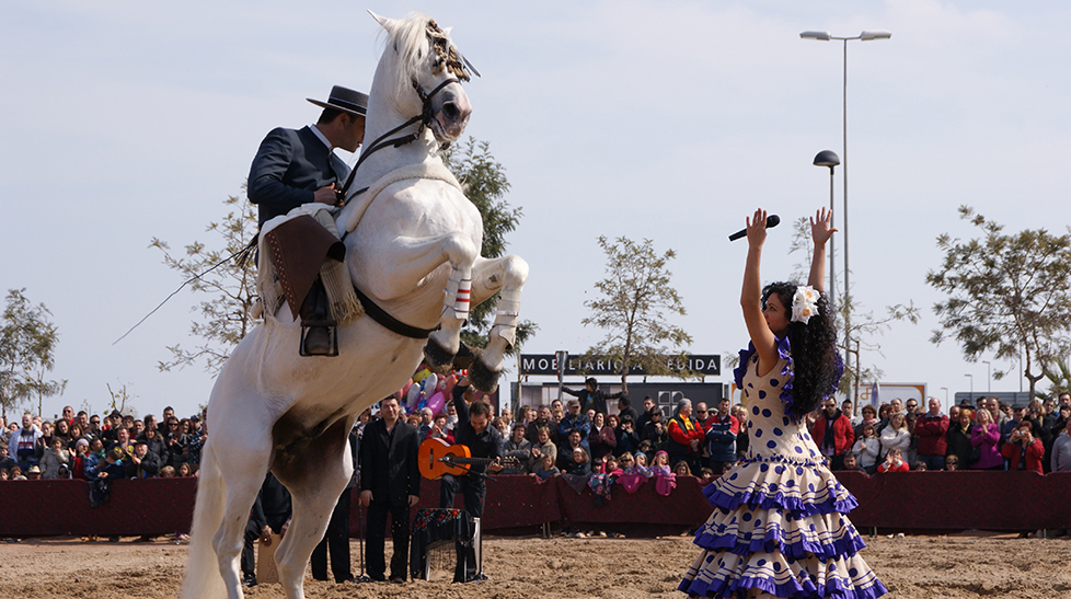 Taranto, el arte de la doma del caballo